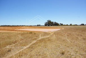 Lot 420, 420 Great Southern Hwy, Broomehill Village, WA 6318