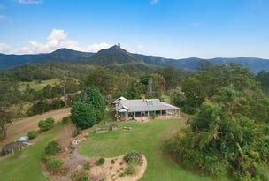 477 Pinnacle Road, Pumpenbil, NSW 2484