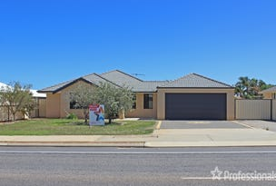 239 Chapman Valley Road, Waggrakine, WA 6530