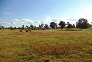 15 Monterey Rd, 'Wotchmajig', Gilgai, NSW 2360