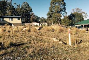 28 Bronte Estate, Bronte Park, Tas 7140