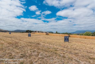 Lot 3, 4, 5 & 6, Number 1 Dylan Street, Brighton, Tas 7030