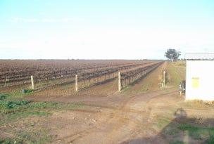 Farm 47 Bob Irvin Road, Hanwood, NSW 2680