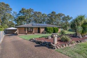 6 Jacob Place, Tenambit, NSW 2323