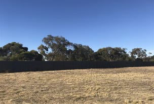 Lot 10, 16 Dublin Road, Mallala, SA 5502