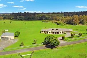 231 Nectarbrook Drive, Orangeville, NSW 2570