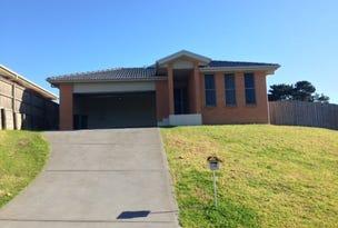 41 James Leslie Drive, Gillieston Heights, NSW 2321