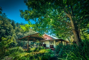 1498 Darkwood Rd, Thora, NSW 2454