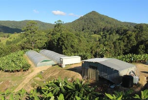 729 Smiths Creek Road, Stokers Siding, Murwillumbah, NSW 2484