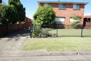 16 Chelsea Drive, Canley Heights, NSW 2166