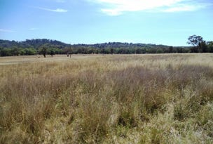 607 Onus Rd, 'Glenreigh', Gum Flat, NSW 2360