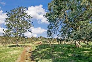 Lot 206 Esk Circuit, Maitland Vale, NSW 2320