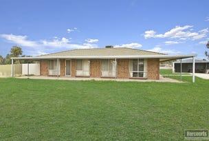 110 Fiddlewood Drive, Freeling, SA 5372