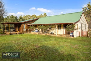 290 Wadleys Road, Reedy Marsh, Tas 7304
