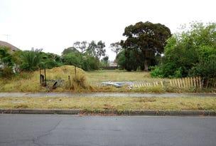74 St Johns Road, Cabramatta, NSW 2166