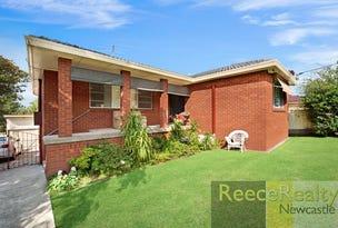 92 King Street, Shortland, NSW 2307