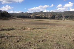 624 Smiths Creek Road, Copmanhurst, NSW 2460