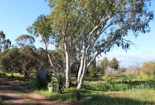 995 Balaklava Road, Bowmans, SA 5550