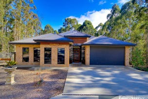 55 Wattle Valley Road, Acacia Hills, Tas 7306