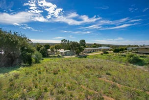 Lot 61, 18 Tom Groggin Drive, Younghusband, SA 5238