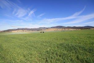 2295 Jerrys Plains Road, Jerrys Plains, NSW 2330