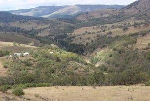 1735 The Bridle Track, Bruinbun, NSW 2795