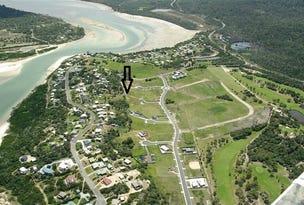 lot 55 Swanwick Estate, Coles Bay, Tas 7215