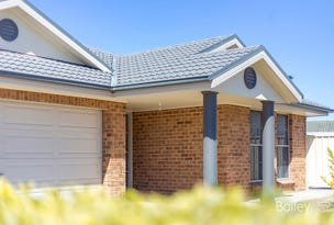 4 Nelson Drive, Singleton, NSW 2330