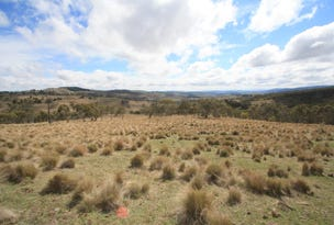 Lot 2 Tom Groggin Road, Nimmitabel, NSW 2631