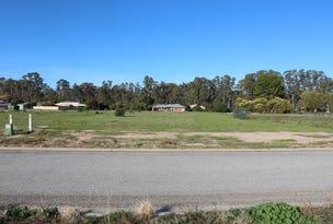 Teddys Lane, Barham, NSW 2732