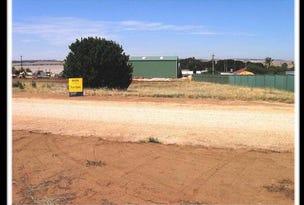 L27 St Ledger Avenue, Maitland, SA 5573