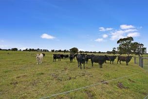 370 Cowwarr -Toongabbie Road, Toongabbie, Vic 3856