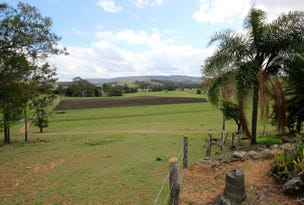 10667 Mount Lindesay Highway, Palen Creek, Qld 4287
