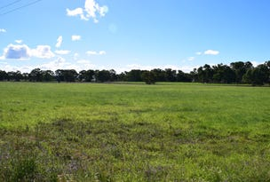 Lot 1 Leyburn-Cunningham Road, Wheatvale, Qld 4370