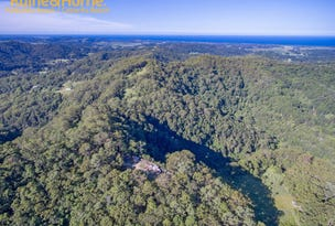 Lot 5 Howards Road, Cudgera Creek, NSW 2484