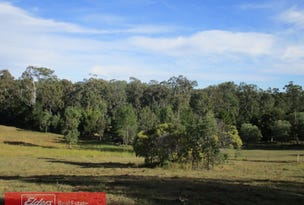 Lot 111 Arborfive Road, Glenwood, Qld 4570
