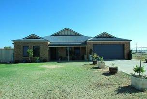 8 Swanbury Road, Moorook, SA 5332