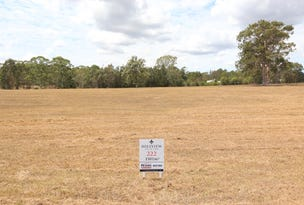 Lot 222 Hillview, Louth Park, NSW 2320