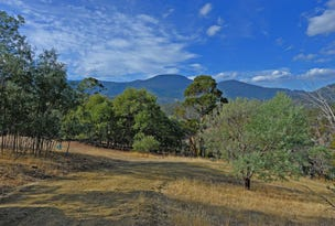Lot 1 Collins Cap Road, Molesworth, Tas 7140