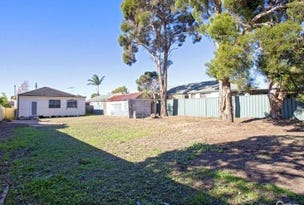 35 Ascot Street, Canley Heights, NSW 2166