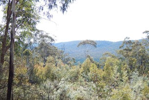 5 BLOCKS FOGGY FOREST RD, Anembo, NSW 2621