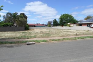 246 Bromley Road, Robinvale, Vic 3549