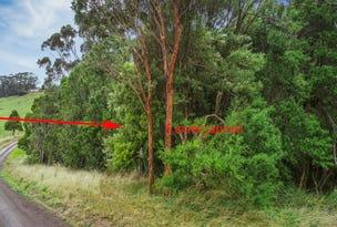 62 Broughtons Access, Skenes Creek North, Vic 3233