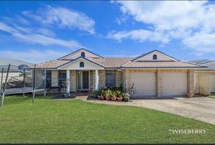 12 Foxtail Crescent, Woongarrah, NSW 2259
