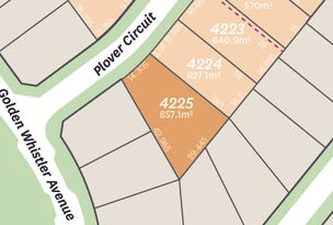 Lot 4225 Plover Circuit, Aberglasslyn, NSW 2320