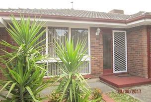 109 Elizabeth Street, Banksia Park, SA 5091