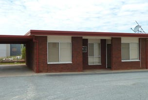 Unit 3/65 Tonkin Avenue, Barmera, SA 5345