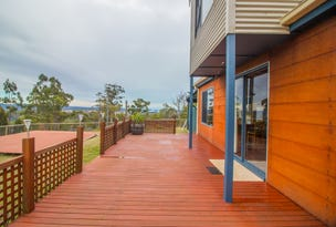 58 Bridport Back Road, Nabowla, Tas 7260