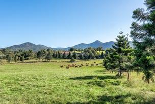 Lot 1 Country Lane, Mount Samson, Qld 4520