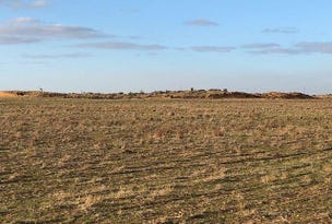 Lot 279 Dukes Highway, Tailem Bend, SA 5260